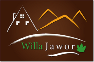Willa Jawor