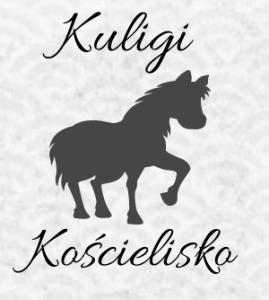 Jakub Sobczyk PRZEWÓZ OSÓB DOROŻKĄ KONNĄ